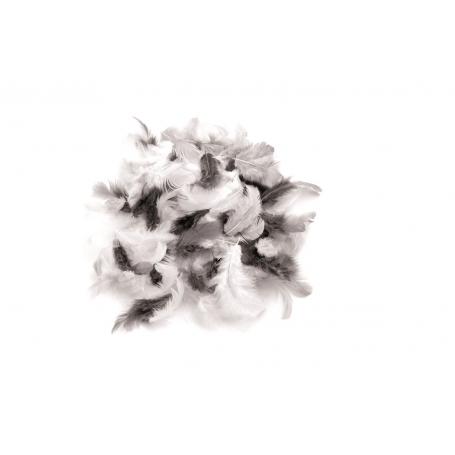 Lot de plumes noires, blanches et grises - Glorex
