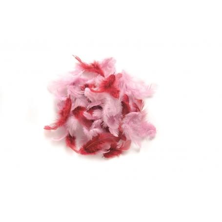 Lot de plumes rouges et roses - Glorex