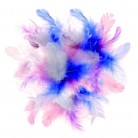 Lot de plumes assortiment pastel - Glorex