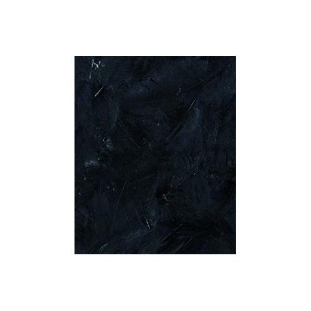 Plumes noires, 3 gr - Artemio