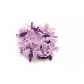 Lot de plumes assortiment lilas - Glorex
