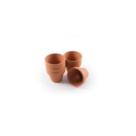 Lot de 5 petits pots de terre cuite 6 cm
