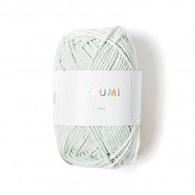 Coton à crocheter Ricorumi 25 g vert glace 037