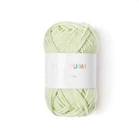 Coton à crocheter Ricorumi 25 g vert pastel 045